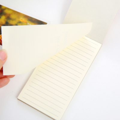 1585-5Kraft memo pads 3 options lined white paper open notebook closeup hand ripping sheet