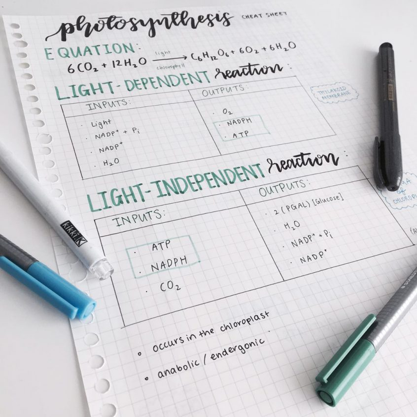 Brush Lettering Tips For Beginners