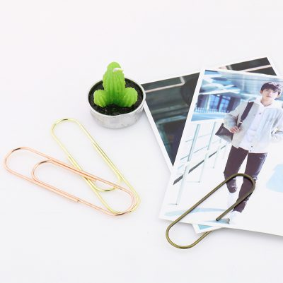 Jumbo Metallic Paperclips With Photos And Props