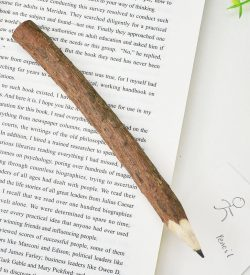 Rustic Branch Pencil On Book