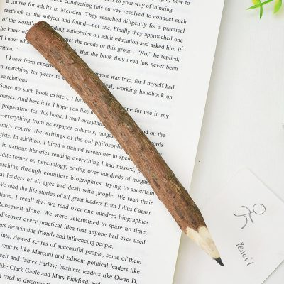 Rustic Branch Pencil On Book